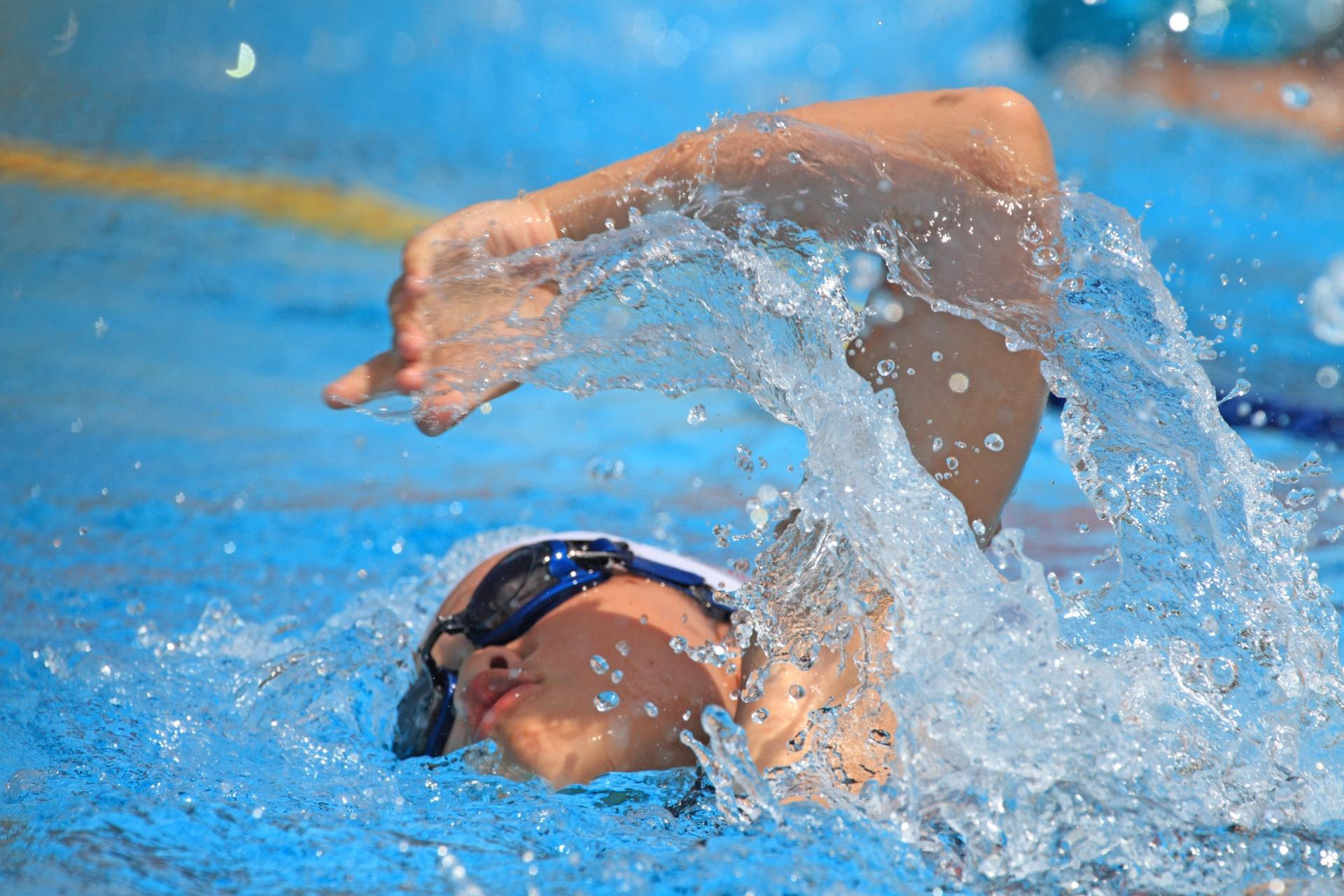 夏季水泳、水泳大会